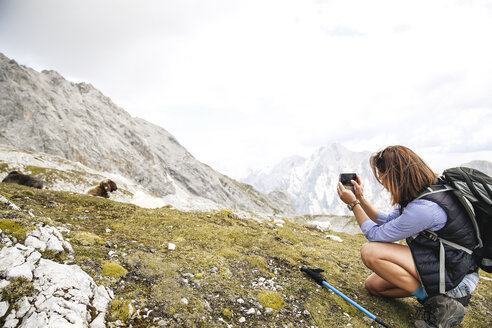 Austria, Tyrol, woman on a hiking trip in the mountains taking cell phone picture - FKF03312