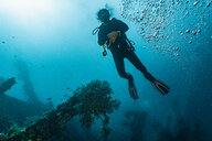 Scuba diver at wreck of USAT Liberty, Tulamben, Bali, Indonesia - ISF20850