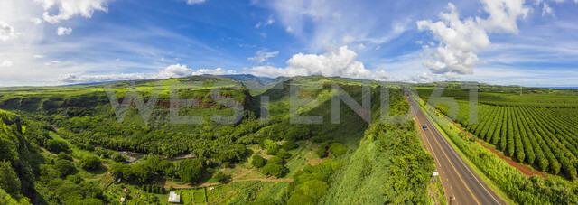 USA, Hawaii, Kauai, Hanapepe Valley, Hanapepe River and Kaumualii Highway, Aerial view - FOF10375