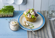 Baked patato with curd, Matjes hering, vegetables and cress - PPXF00187