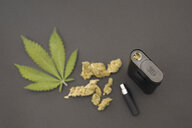 Knolling of marijuana leaves, buds and vaporizer - HEROF22649