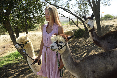 Blond woman with two leashed alpacas - ECPF00494