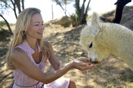 Blond mature woman with drinking young alpaca - ECPF00497
