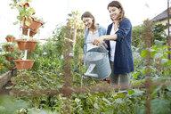 Latina mother and teenage daughter watering plants in vegetable garden - HEROF22905