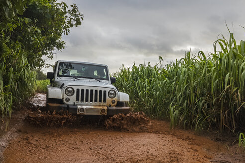 USA, Hawaii, Kauai, off-road vehicle on muddy dirt road, puddle - FOF10443