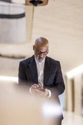 Bald mature businessman with grey using cell phone - FMKF05401