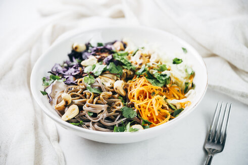 Bowl of buckwheat noodle salad with raw vegetables, roasted cashews,  coriander and spicy dressing - IPF00497