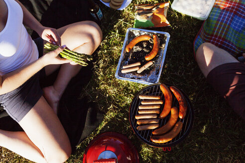 High angle view of woman preparing food on barbeque at picnic - ASTF03577