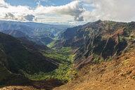 USA, Hawaii, Kaua'i, Waimea Canyon State Park, View to Waimea Canyon - FOF10483