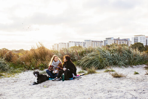 Friends sitting with dogs on beach against sky - ASTF04451