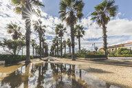 Spain, Valencia, El Cabanyal, view to El Micalet palm tree-lined promenade - KEBF01168