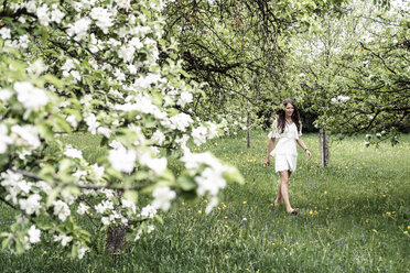 Young woman wearing white dress walking barefoot in garden with blossoming apple trees - WFF00015