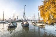 Germany, Hamburg, Museum harbour Oevelgoenne in autumn - KEB01184