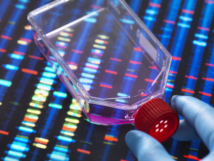 Genetic Engineering, Scientist viewing cells in a culture jar with a DNA profiles on a screen in the background illustrating gene editing - ABRF00336