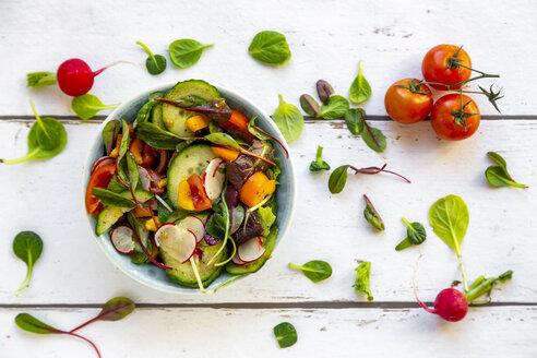 frischer Salat mit Gurken, Tomaten, Radieschen, Paprika, Blattsalate - SARF04132