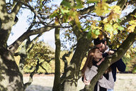 Affectionate couple at a tree in a park - IGGF00826