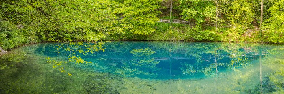 Germany, Swabian Jura, spring that serves as the source of the river Blau - WGF01303