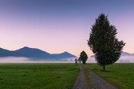 Germany, Bavaria, Upper Bavaria, near Benediktbeuern, morning mood - LHF00604