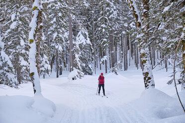 Austria, Tirol, Riss Valley, Karwendel, cross country skier in winter landscape - MRF01915