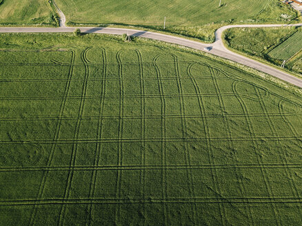 Aerial view of agricultural landscape during sunny day - CAVF60746