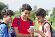 Smiling friends using smart phone while standing against plants during sunny day - CAVF60870