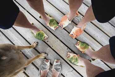 View from above friends wearing humorous fish slippers on dock - CAIF22767