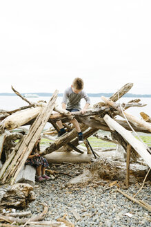 Playful siblings sitting on logs at beach against clear sky - CAVF61440