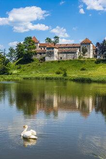 Svirzh Castle, Lviv Oblast, Ukraine - RUNF01419