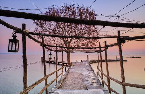 Italy, Punta san Vigilio, Lake Garda, jetty and tree in winter at sunset - MRF01928