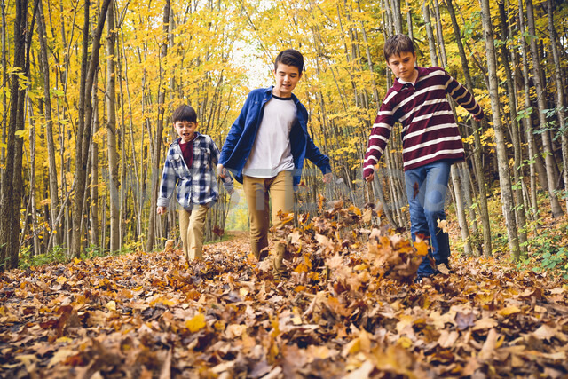 Brothers playing with dry leaves on footpath in forest during autumn - CAVF61749 - Cavan Images/Westend61