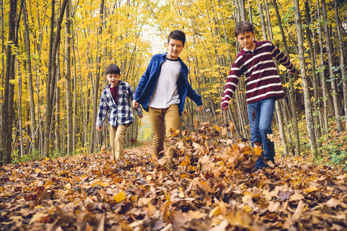 Brothers playing with dry leaves on footpath in forest during autumn - CAVF61749