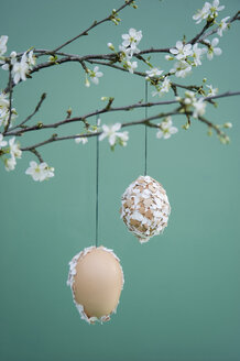 Easter decoration, Easter egg with eggshells hanging on twig - GISF00396