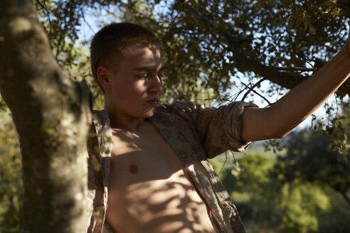France, teenage boy climbing in tree - AMEF00009