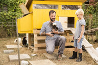 Father and son with Polish chickens at chickenhouse in garden - MFRF01244