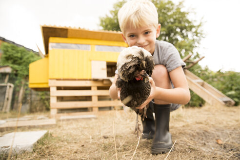 Boy holding Polish chicken at chickenhouse in garden - MFRF01262