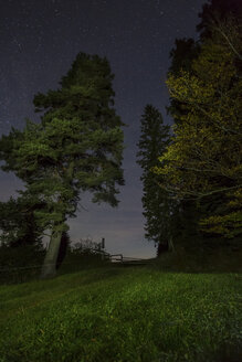 Germany, Bavaria, Allgaeu, Auerberg, trees under starry sky at night - DLF00039