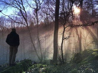 Germany, Rhineland Palatinate, Palatinate Forest, man, hiker watching beam of sunlight in foggy fores - GWF05928