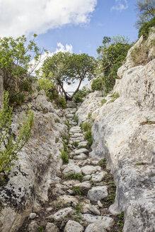 Sicily, Syracuse Province, Noto Antica, Cava del Carosello, hiking trail - MAMF00452