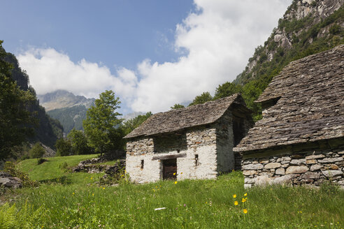 Switzerland, Ticino, Sonogno, typical historic stone house  and summer meadow - GWF05968