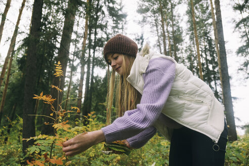 Low angle view of woman picking leaves while standing against trees in forest - CAVF62636