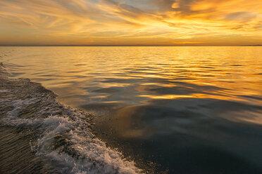Germany, Baden-Wuerttemberg, Lake Constance, stern wave - SH02075