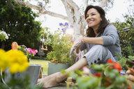 Smiling brunette woman planting flowers in backyard - HEROF27454