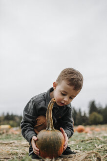 Full length of cute boy holding pumpkin while crouching on field against sky during autumn - CAVF62821