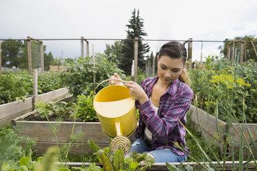 Young woman watering plants in vegetable garden - HEROF28427