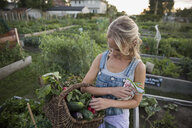 Woman holding harvested vegetables in basket in garden - HEROF28442