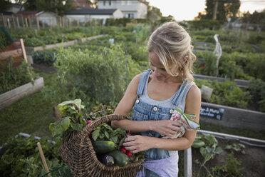 Woman holding harvested vegetables in basket in garden - HEROF28442