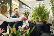 Customer choosing potted plant in flower shop - ZEDF01962