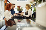 Happy couple and shop assistant with potted plant at counter in flower shop - ZEDF01989