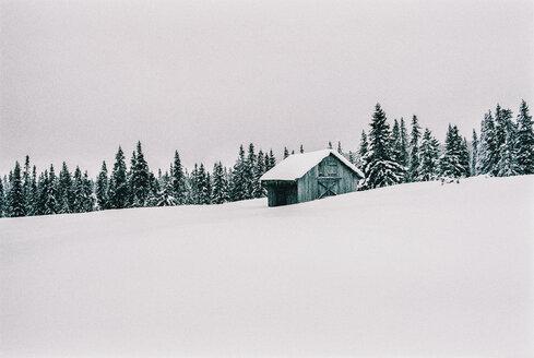 Norway, Lillehammer, wooden hut in winter landscape - JUBF00335