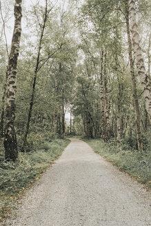 Netherlands, Schiermonnikoog, path through the forest - DWF00341